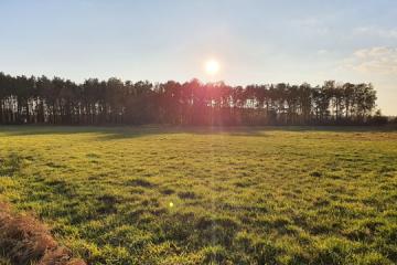 passer au solaire : ensoleillement batiment photovoltaique
